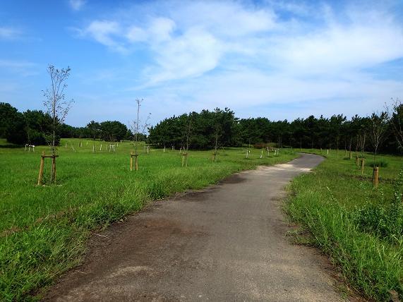 25 公園内.JPG