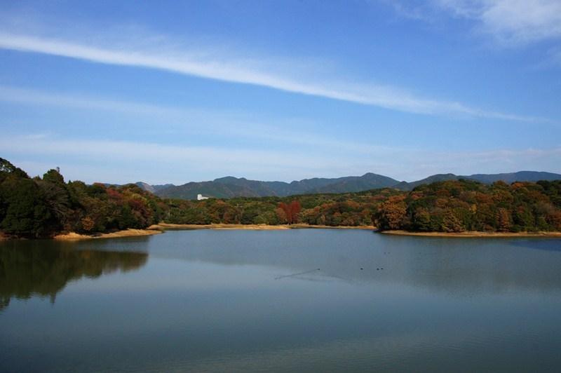 26 池と表現するのがピッタリな池.JPG