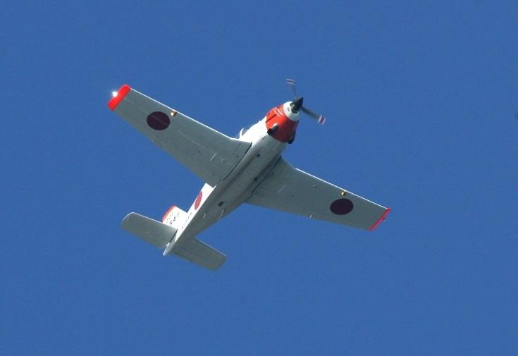 ジェット機とは違った優雅さがあります.jpg